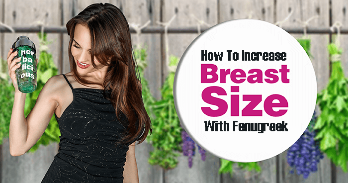 how to increase breast size with fenugreek